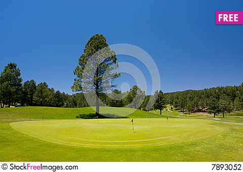 Free Golf Hole In Arizona Stock Photography - 7893052