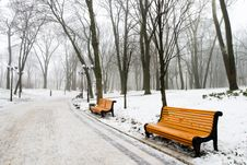 Free Winter Day Royalty Free Stock Images - 7890299