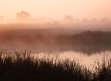 Free Misty Morning At Pond Stock Image - 7890891