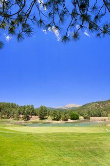 Free Contrasting Arizona Golf Course Stock Image - 7892441