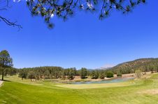 Free Contrasting Arizona Golf Course Stock Photo - 7892450