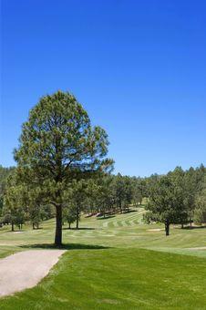 Free Arizona Golf Course Royalty Free Stock Image - 7892546