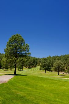 Free Lush Arizona Golf Fareway Stock Images - 7892824