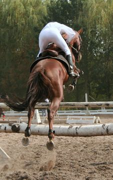 Equestrian  Jumping Over Barrier 2 Stock Image
