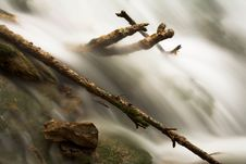 Free Sticks In Flowing Stream Royalty Free Stock Photos - 7892978