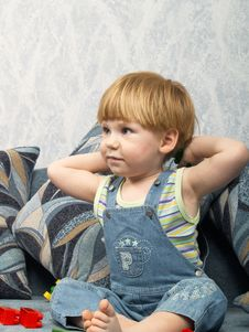 Free Portrait Of The Little Boy Royalty Free Stock Photo - 7893115