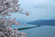 Free Amanohashidate Stock Photo - 7893440