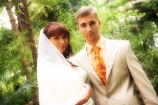 The Walk Of Newlyweds Stock Photography