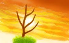 Free Surreal Tree And Sanset Stock Photo - 7895570