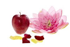 Free Apple And Flower Stock Image - 7897601