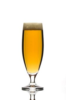 Free Glass Of Beer Royalty Free Stock Images - 7898539