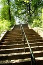 Free Stairway To Forest Stock Photo - 792580