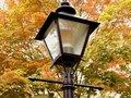 Free Lamp Royalty Free Stock Photo - 796045