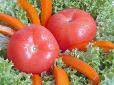 Free Tomato In Salad Royalty Free Stock Photo - 790295