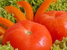 Free Tomato In Salad Royalty Free Stock Images - 790429