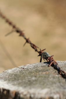 Free Barbed Wire And Post Royalty Free Stock Photography - 791137