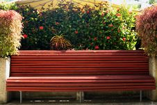 Free Tropical Park Bench Royalty Free Stock Photo - 791385