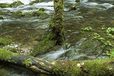 Free Rakov Skocian River Stock Photo - 794610