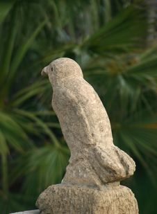 Free Stone Bird Stock Photography - 794662