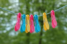 Free Coloured Pegs Stock Photography - 794982