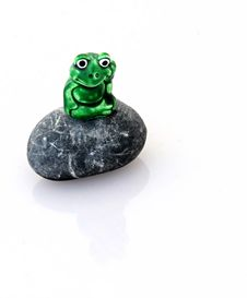 Frog On A Rock Stock Image