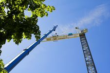 Free Crane Royalty Free Stock Photography - 797417