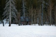 Free Cabin In Snow Stock Photography - 799422
