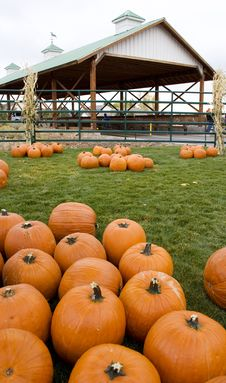 Free Pumpkins And Covered Bridge Stock Photo - 799910