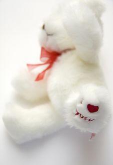 Free Teddy Bear Stock Photo - 7901230