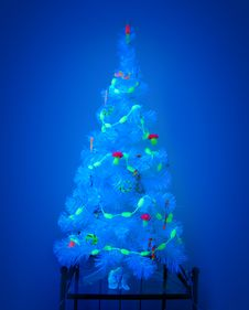 Free Mystic Christmas Tree Royalty Free Stock Images - 7903629