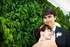 Free Portrait Of Bride And Groom Royalty Free Stock Images - 7905519