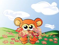 Free Bear With Flowers Royalty Free Stock Photos - 7906958