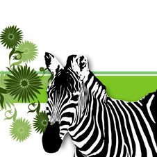 Free Nature Zebra, Abstract Floral Background Royalty Free Stock Photos - 7909028