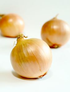 Free Onions Isolated Royalty Free Stock Image - 7909916