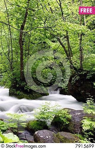 Oirase-gawa River Stock Photo