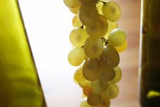 Free Grape Stock Photography - 7910072