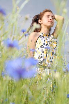 Girl Posing In Field Of Flowers Royalty Free Stock Image