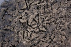 Free Filthy Ground Stock Images - 7912384