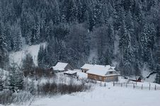 Free Village In The Winter Forest Stock Image - 7912521