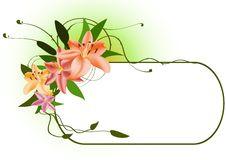 Free Floral Frame Stock Photos - 7912893
