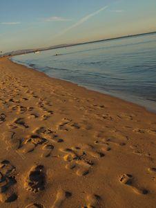 Free At Beach. Unusual Veiw Stock Photo - 7915530