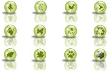 Free Green Sphere Icons With Shapes Stock Photo - 7915780
