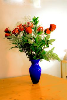 Free Roses Stock Photos - 7915943