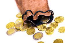 Free Euro Coins Stock Photos - 7916373