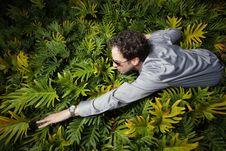 Free Man Swimming Through Bushes Royalty Free Stock Image - 7916796