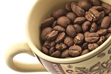 Free Coffee Beans In A Coffee Cup Royalty Free Stock Image - 7918606