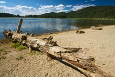 Log And Lake Stock Photography
