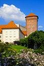 Free Wawel Castle, Krakow Royalty Free Stock Image - 7921116