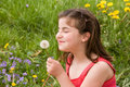 Free Little Girl Blowing Dandelion Seeds Royalty Free Stock Photography - 7927327