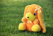 Free Dog Toy Royalty Free Stock Image - 7920096